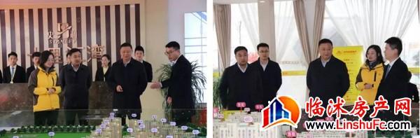 史丹利农业集团总裁高进华视察房地产公司临沂区域项目